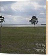 Lake Yale Florida Wood Print