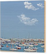 Lakefront Chicago Wood Print by Christine Till