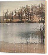 Lakes Edge Wood Print