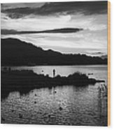 Lakes Of Killarney View Wood Print