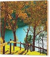 Lakeshore Lane Wood Print