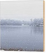 Lakeside In The Winter Snow Wood Print