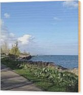 Lakeside Walk Wood Print