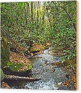 Lamance Creek  Wood Print