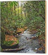 Lamance Creek Vertical Wood Print