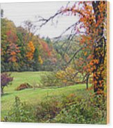 Lamance Valley In The Fall Wood Print