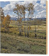 Lamar Valley In The Fall - Yellowstone Wood Print