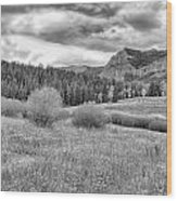 Lamar Valley Looking Towards Specimen Ridge Bw- Yellowstone Wood Print