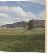 Lamar Valley No. 2 Wood Print