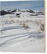 Lamar Valley Winter Scenic Wood Print