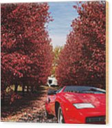 Lamborghini Maple Lane Big House Wood Print