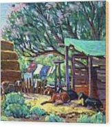 Lamb's Barn Wood Print