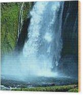 Lamolo Falls Bowl Wood Print