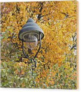 Lamp In The Autumn Leaves Wood Print