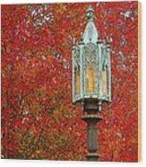 Lamp Post In Fall Wood Print