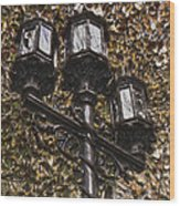 Lamp Post In The Fall Wood Print