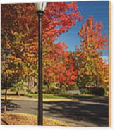 Lamp Post On The Corner Wood Print