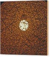 Lamp Tangle Wood Print