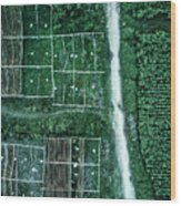 Land Of Idyllic Beauty Wood Print