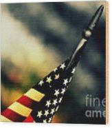 Land Of The Free - 2 Wood Print