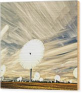 Land Of The Giant Lollypops Wood Print by Matt Molloy