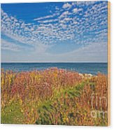 Land Sea Sky Wood Print