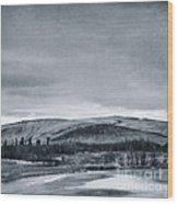 Land Shapes 11 Wood Print