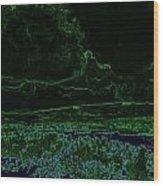 Landcape Glowing Wood Print