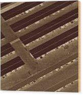 Landing Strips Wood Print