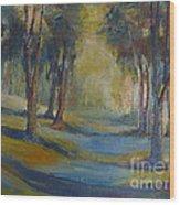 Lands End 04 Wood Print