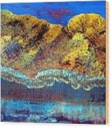 Landscape 130214-1 Wood Print