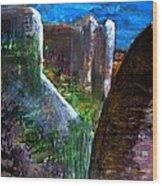 Landscape 130214-4 Wood Print
