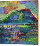 Landscape 130214-5 Wood Print