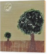 Landscape 14-006 Wood Print