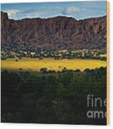 Landscape 22 E Los Alamos Nm Wood Print