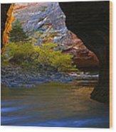Landscape 319 Wood Print