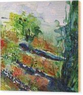 Landscape-4  Wood Print