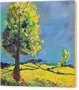 Landscape 563160 Wood Print