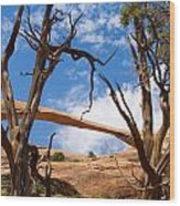 Landscape Arch - Arches National Park Wood Print