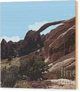 Landscape Arch In Arches National Park Wood Print
