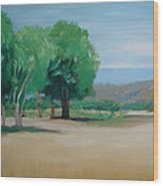 Landscape At Montelimar Wood Print