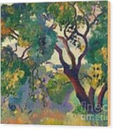 Landscape At St Tropez  1 Wood Print by Pg Reproductions