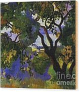 Landscape At St Tropez  2 Wood Print