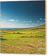 Landscape At Summer Wood Print