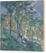 Landscape, C.1900 Wood Print