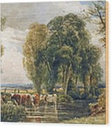 Landscape Cattle In A Stream With Sluice Gate Wood Print