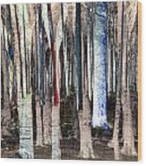 Landscape Forest Trees Wood Print