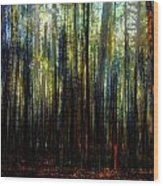 Landscape Forest Trees Tall Pine Wood Print