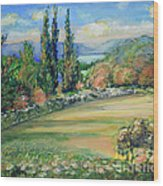 Landscape From Kavran Wood Print