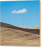 Landscape In Summer Tuscany Italy Wood Print